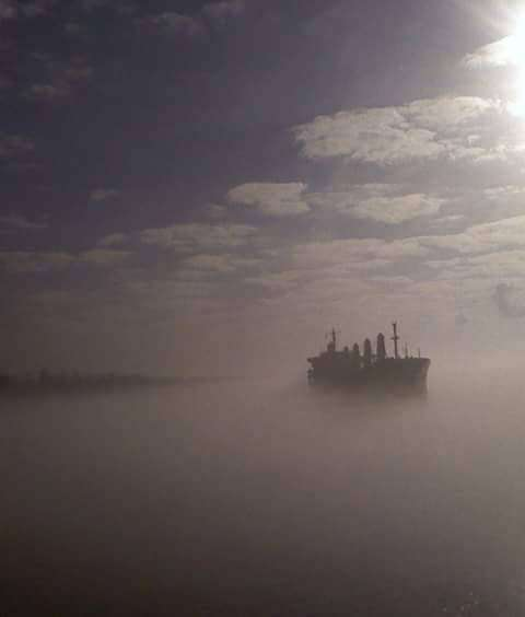 Karina Komorowska Mississippi w porannej mgle. ...