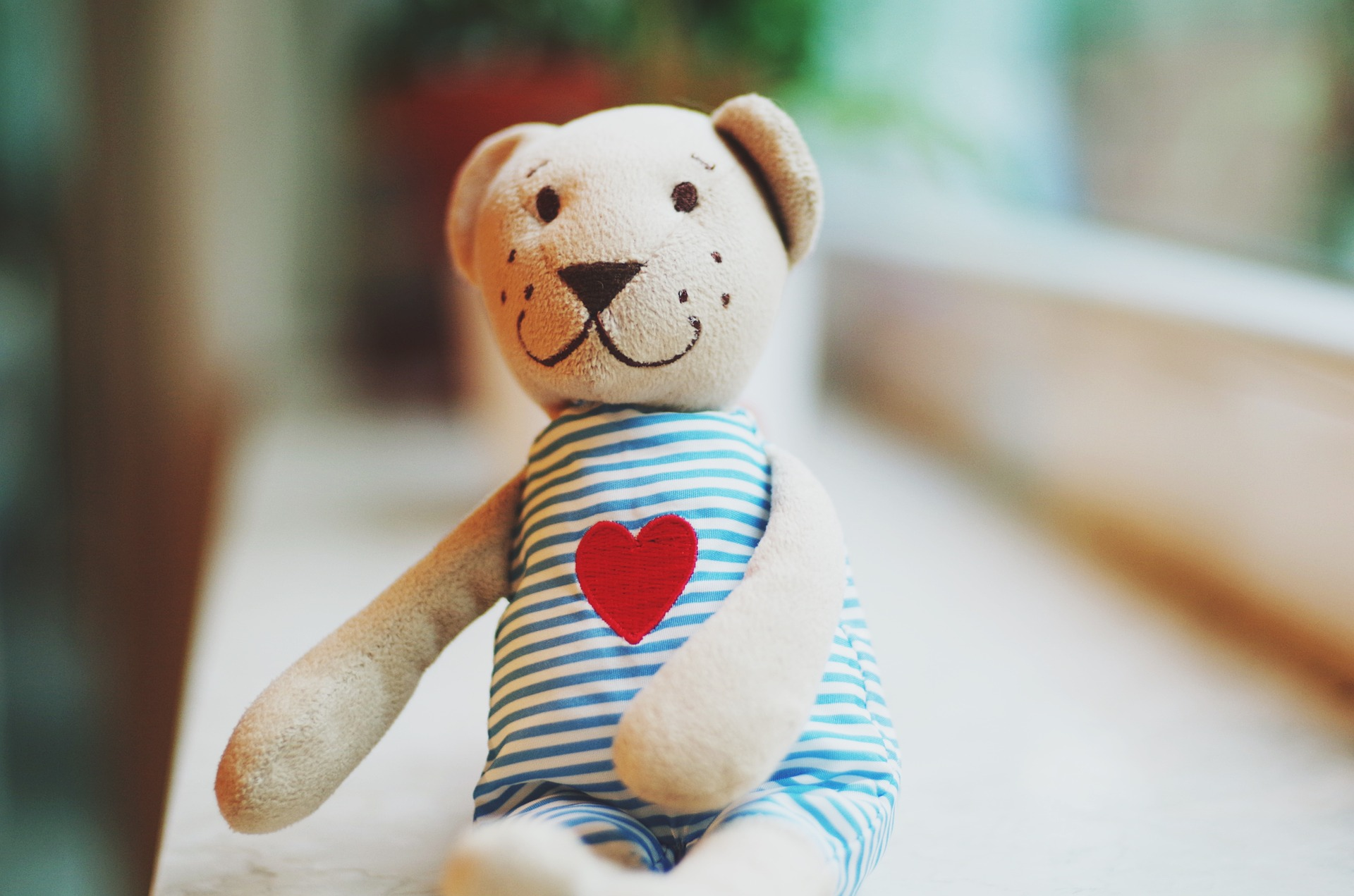 teddy-1477669_1920